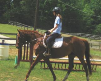 Girl Horse Back Riding